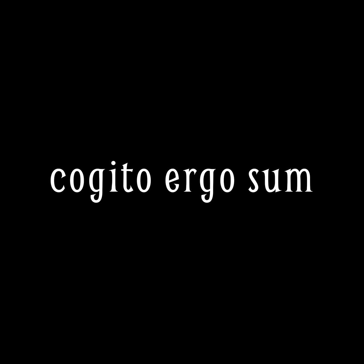 cogito ergo sum  Cogito Ergo Sum T-Shirt