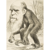 Science, Religion, and Secularism Part XI: Arthur O. Lovejoy, the Great Chain of Being and Pre-Darwinian Biology