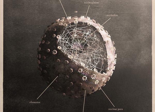 science religion nucleus epic philosophy